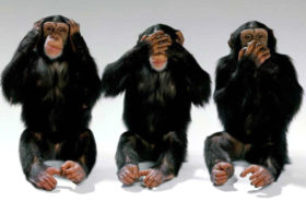 "E se o eleitor cobrasse ""princípios"" aos candidatos?"