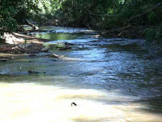 """Na foto, o Rio Corumbataí - uma sub-bacia do Rio Piracicaba, ambos prejudicados pelo """"sequestro"""" de água da região"""