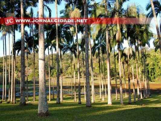 """O famoso """"Horto Florestal"""" será o tema da Semana do Meio Ambiente de Rio Claro"""