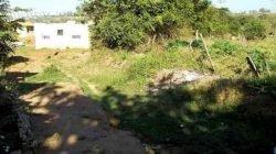 Jd. Maria Cristina fica na região da periferia de Rio Claro