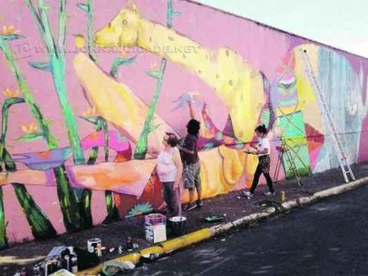 Cerca de 30 alunos participaram da oficina de grafite, que durou dois meses, levando um agradável colorido aos muros da cidade de Santa Gertrudes