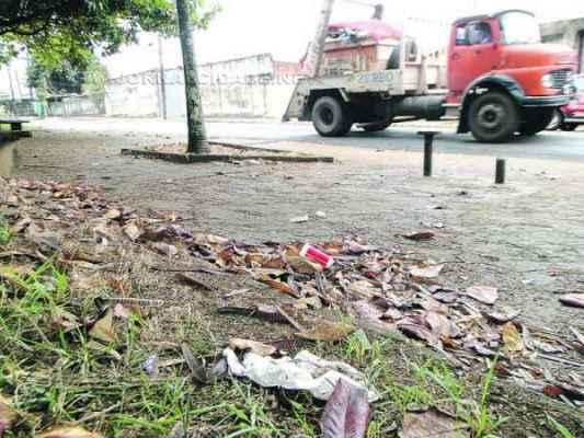 Devido à falta de lixeiras, há lixo espalhado por diversos pontos; bancos, ainda, encontram-se quebrados