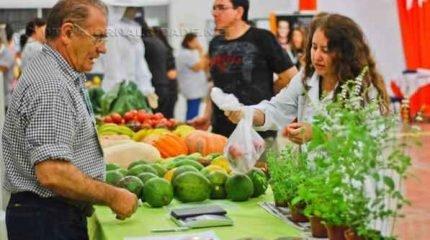 Banca de produtos na Feira Corujão realizada por produtores familiares da região. Evento acontece às quartas-feiras e sexta-feiras, das 18h às 21h