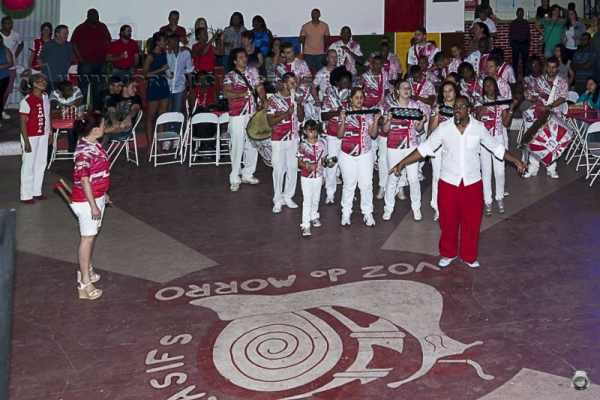 """A partir do tema """"Sustentabilidade a hora é essa, um povo forte e naturalmente sustentável"""", a Grasifs definirá em concurso samba para o Carnaval 2015"""
