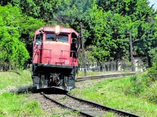 DE VOLTA PARA A ESTAÇÃO: composição leva cerca de um quilômetro de trilhos para a antiga Estação Ferroviária de RC