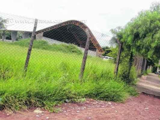 Mato alto em terreno da Escola Elpídio Mina no bairro Bela Vista. Prefeitura disse que está fazendo manutenção nas escolas