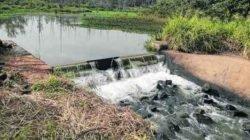 Ponto de captação de água do Ribeirão Claro dentro da Floresta