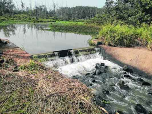 Ponto de captação de água do Ribeirão Claro dentro da Floresta Estadual Edmundo Navarro de Andrade