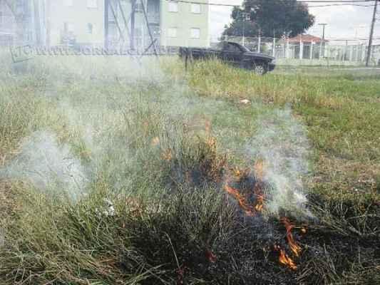 Atear fogo ao mato é crime ambiental passível de penalização com multa (foto arquivo)