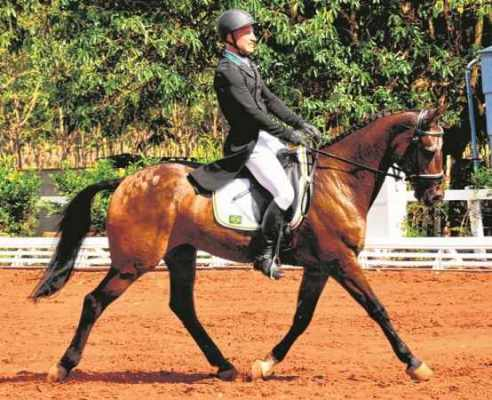 Henrique Pinheiro com seu cavalo LandQuenote, um dos representantes do Brasil no CCE, nos Jogos Pan-Americanos (Foto: Marco Lagazzi/PhotoSport)