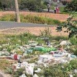Moradores dividem espaço com lixo despejado em dois terrenos na Avenida 60, no Panorama
