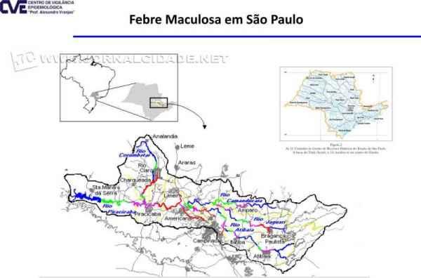 Avanço da Febre Maculosa Brasileira no interior de São Paulo.