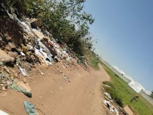 Localizada entre os parques Mãe Preta e dos Eucaliptos, a pequena estrada sofre os impactos ambientais