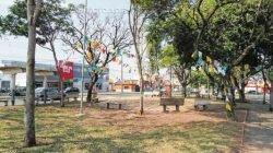 Bandeirinhas ainda decoram a praça após festa de um ano dos shows que acontecem aos domingos