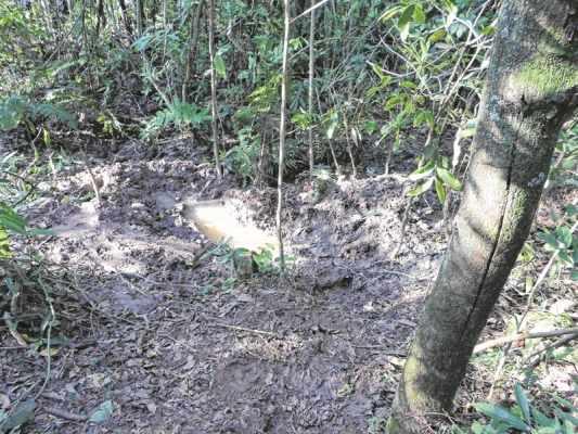 Na foto, a cova em que Adilson foi enterrado, em uma mata existente próximo a um barraco