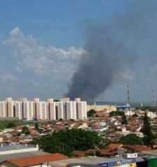 O Corpo de Bombeiros informou que trata-se de um incêndio em área de cana-de-açúcar