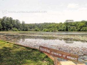 Floresta Estadual - O antigo Horto Florestal é um dos locais preferidos dos rio-clarenses. Organize um piquenique com os amigos no campo em frente ao lago. Lembre-se de levar repelente para a pele e sacos plásticos para guardar o lixo.