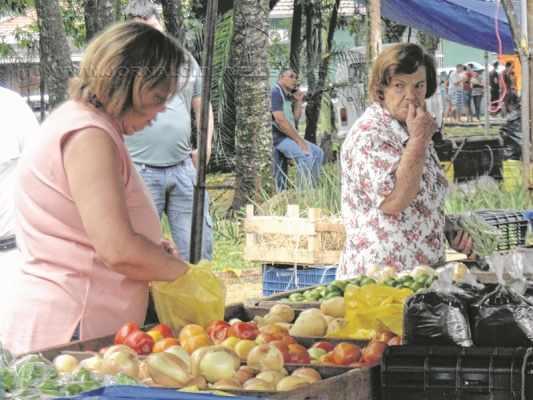 Hábito de comprar nas feiras era no início por falta de opção em supermercados, atualmente ocorre por uma vida saudável
