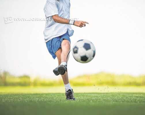 Apoio e presença da família devem ser frequentes na vida dos futuros atletas, independentemente da modalidade esportiva
