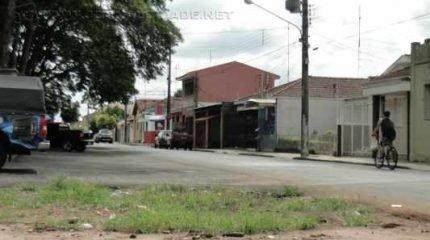 A velha figueira não compõe mais a paisagem do bairro São Benedito, que soma cerca de 15 quarteirões na região central