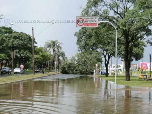 TEMPORAL: o município foi atingido por uma forte chuva acompanhada de rajadas de vento, que provocaram a queda de várias árvores e de parte da fachada de um varejão no Centro