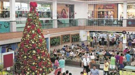 Árvore Solidária instalada na Praça de Alimentação do Shopping Center Rio Claro