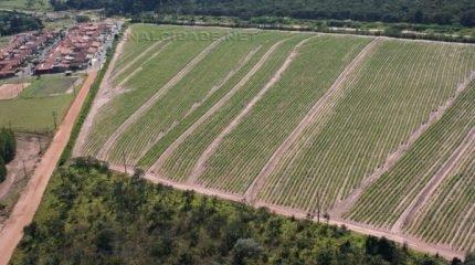 O terreno foi comprado pela municipalidade pelo valor total de R$ 438.900,00