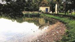 Lixo acumulado às margens do Lago Azul de Rio Claro. Prefeitura pede colaboração dos usuários no descarte correto do lixo