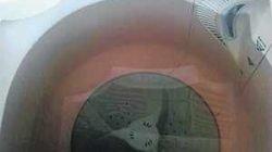 Leitora encaminhou ao JC foto da coloração da água (marrom) na máquina de lavar roupas