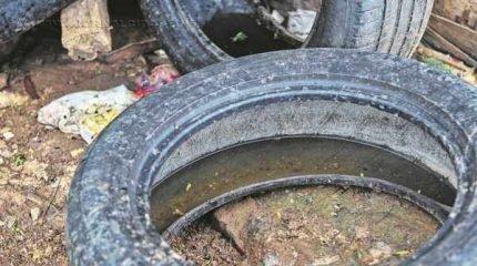 Lei prevê multa para quem for flagrado com criadouros de dengue em Rio Claro. Na foto, pneu com água parada (Foto: Claudio Fachel/ Palácio Piratini)