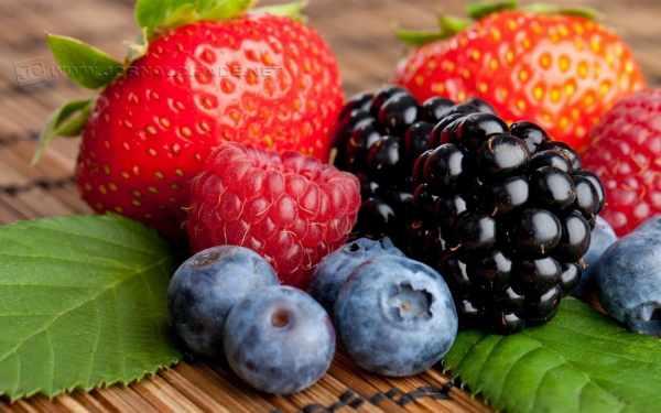 As frutas vermelhas ainda têm baixo teor de proteínas e lipídeos