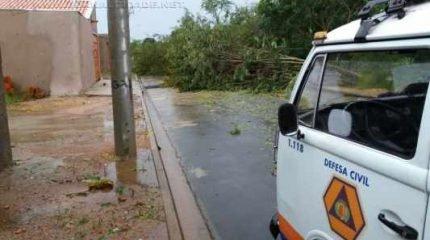 Após a forte chuva em Ajapi, a equipe da Defesa Civil de Rio Claro contabilizou os estragos registrados no distrito
