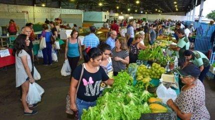 São 65 produtores que comercializam frutas, verduras, pães, queijos, temperos, entre outros itens