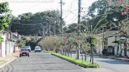 Ajapi em comemoração: distrito é maior que 200 municípios do Estado de São Paulo