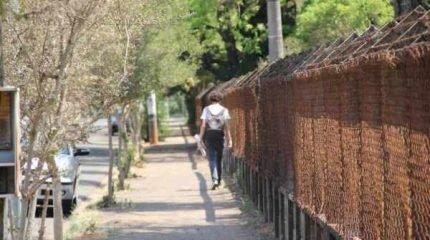Apesar de estudantes relatarem variados crimes na região da Unesp, PM reforça pedido para que jovens registrem o boletim de ocorrência