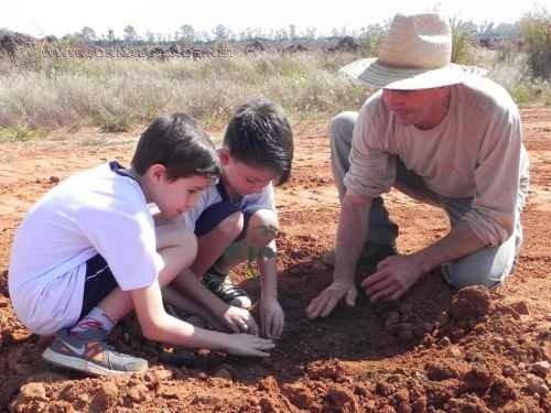 Crianças da Escola Professora Amália Malheiro Moreira, de Cordeirópolis, realizam plantio de árvores frutíferas nas dependências da Cerâmica Incefra