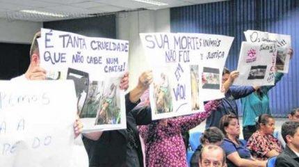 Protetores independentes da causa animal vêm ocupando o plenário da Câmara, após episódio de supostos maus-tratos no Canil